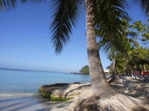 dominican romance tour